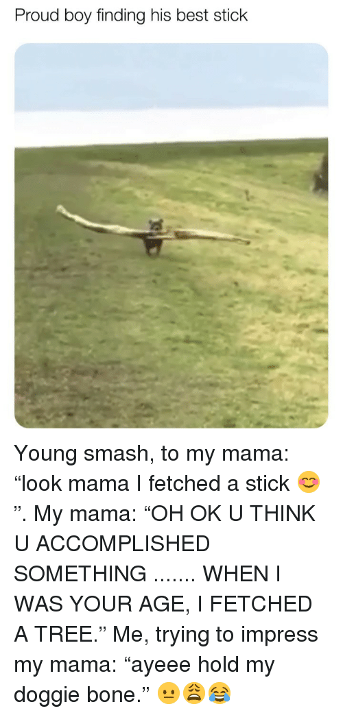 "Memes, Smashing, and Best: Proud boy finding his best stick Young smash, to my mama: ""look mama I fetched a stick 😊"". My mama: ""OH OK U THINK U ACCOMPLISHED SOMETHING ....... WHEN I WAS YOUR AGE, I FETCHED A TREE."" Me, trying to impress my mama: ""ayeee hold my doggie bone."" 😐😩😂"