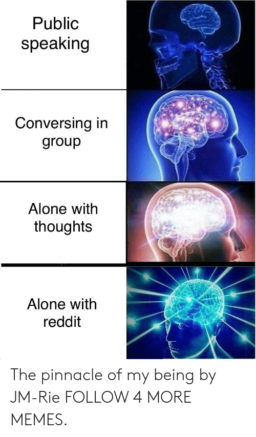 Being Alone, Dank, and Memes: Public  speaking  Conversing in  group  Alone with  thoughts  Alone with  reddit The pinnacle of my being by JM-Rie FOLLOW 4 MORE MEMES.