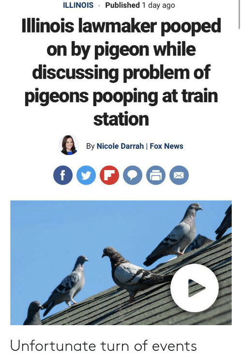 News, Fox News, and Illinois: Published 1 day ago  ILLINOIS  Illinois lawmaker pooped  on by pigeon while  discussing problem of  pigeons pooping at train  station  By Nicole Darrah | Fox News  f Unfortunate turn of events