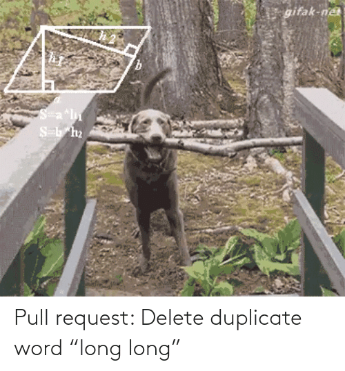 "Long: Pull request: Delete duplicate word ""long long"""