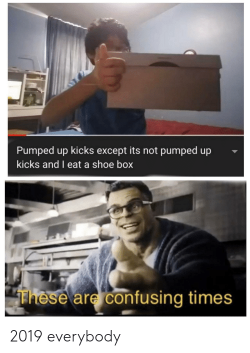 Box, Shoe, and Pumped Up Kicks: Pumped up kicks except its not pumped up  kicks and I eat a shoe box  These are confusing times 2019 everybody