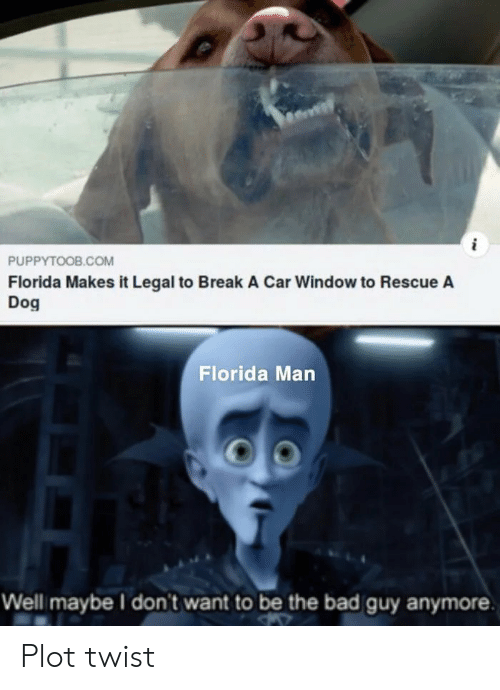 Bad, Florida Man, and Break: PUPPYTOOB.COM  Florida Makes it Legal to Break A Car Window to Rescue A  Dog  Florida Man  Well maybe I don't want to be the bad guy anymore Plot twist