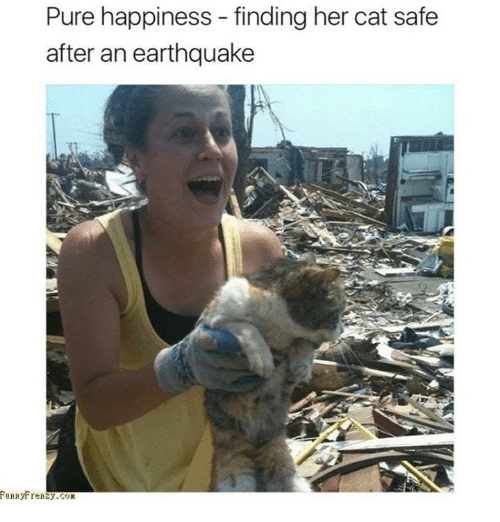 Earthquake, Happiness, and Her: Pure happiness - finding her cat safe  after an earthquake  unnytrenzy.COR