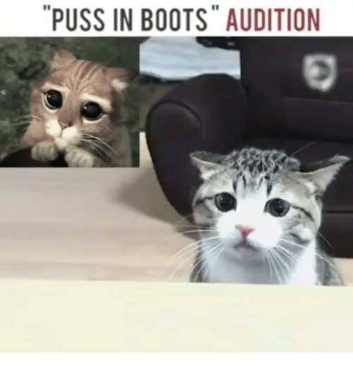 """Pussing: """"PUSS IN BOOTS"""" AUDITION"""
