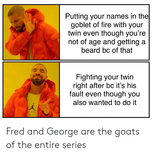 Beard, Fire, and Wanted: Putting your names in the  goblet of fire with your  twin even though you're  not of age and getting a  beard bc of that  Fighting your twin  right after bc it's his  fault even though you  also wanted to do it Fred and George are the goats of the entire series