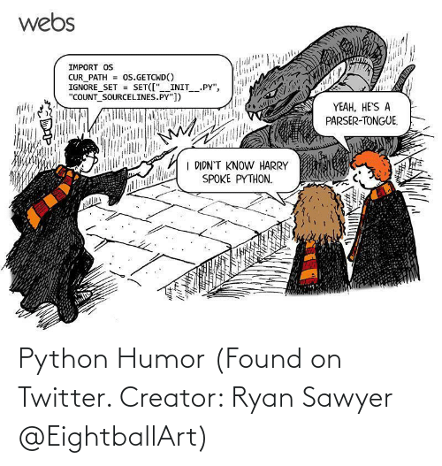 python: Python Humor (Found on Twitter. Creator: Ryan Sawyer @EightballArt)