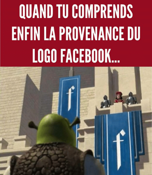 Memes, 🤖, and Logo: QUAND TU COMPRENDS  ENFIN LA PROVENANCE DU  LOGO FACEB00K