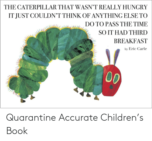 Children: Quarantine Accurate Children's Book