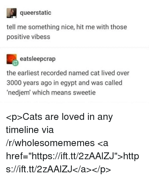 "Cats, Egypt, and Nice: queerstatic  tell me something nice, hit me with those  positive vibess  eatsleepcrap  the earliest recorded named cat lived over  3000 years ago in egypt and was called  'nedjem which means sweetie <p>Cats are loved in any timeline via /r/wholesomememes <a href=""https://ift.tt/2zAAlZJ"">https://ift.tt/2zAAlZJ</a></p>"