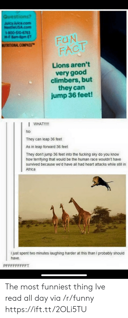 Africa, Fucking, and Funny: Questi  JuicyJuice.com  NestleUSA.com  1-800-510-6763  M-F 8am-8pm ET  COMPASS-I FUN  FACT  Lions aren't  very good  climbers, but  they can  jump 36 feet!  WHAT!  No  They can leap 36 feet  As in leap forward 36 feet  They don't jump 36 feet into the fucking sky do you know  how terrifying that would be the human race wouldn't have  survived because we'd have all had heart attacks while still in  Africa  I just spent two minutes laughing harder at this than I probably should  have. The most funniest thing Ive read all day via /r/funny https://ift.tt/2OLi5TU