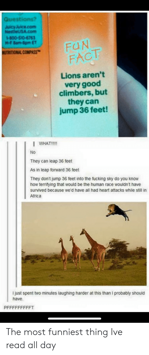 Africa, Fucking, and Good: Questi  JuicyJuice.com  NestleUSA.com  1-800-510-6763  M-F 8am-8pm ET  COMPASS-I FUN  FACT  Lions aren't  very good  climbers, but  they can  jump 36 feet!  WHAT!  No  They can leap 36 feet  As in leap forward 36 feet  They don't jump 36 feet into the fucking sky do you know  how terrifying that would be the human race wouldn't have  survived because we'd have all had heart attacks while still in  Africa  I just spent two minutes laughing harder at this than I probably should  have. The most funniest thing Ive read all day