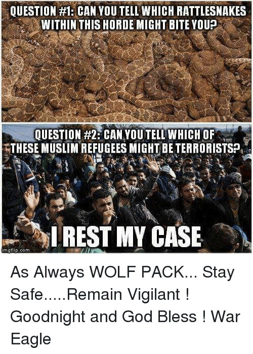 Memes, Eagle, and 🤖: QUESTION #1: CAN YOU TELL WHICH RATTLESNAKES  WITHIN THIS HORDE MIGHT BITE YOUP  QUESTION #2 CAN YOUTELL WHICH OF  THESE MUSLIMREFUGEES MIGHT BETERRORISTSP,  I REST MY CASE  rngt As Always WOLF PACK... Stay Safe.....Remain Vigilant ! Goodnight and God Bless  !                              War Eagle