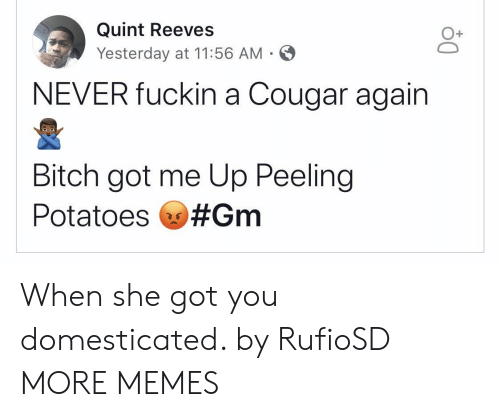 Cougared: Quint Reeves  Yesterday at 11:56 AM  O+  NEVER fuckin a Cougar again  Bitch got me Up Peeling  Potatoes When she got you domesticated. by RufioSD MORE MEMES
