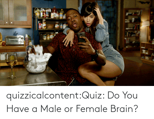 Do You Have: quizzicalcontent:Quiz: Do You Have a Male or Female Brain?