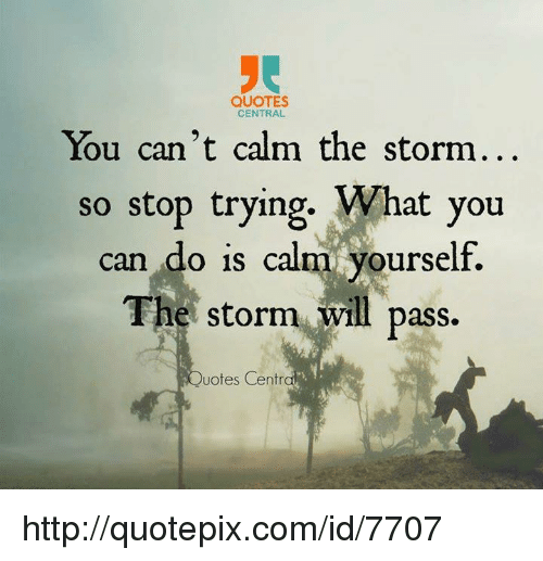 Quotes Central You Cant Calm The Storm So Stop Trying What You Can