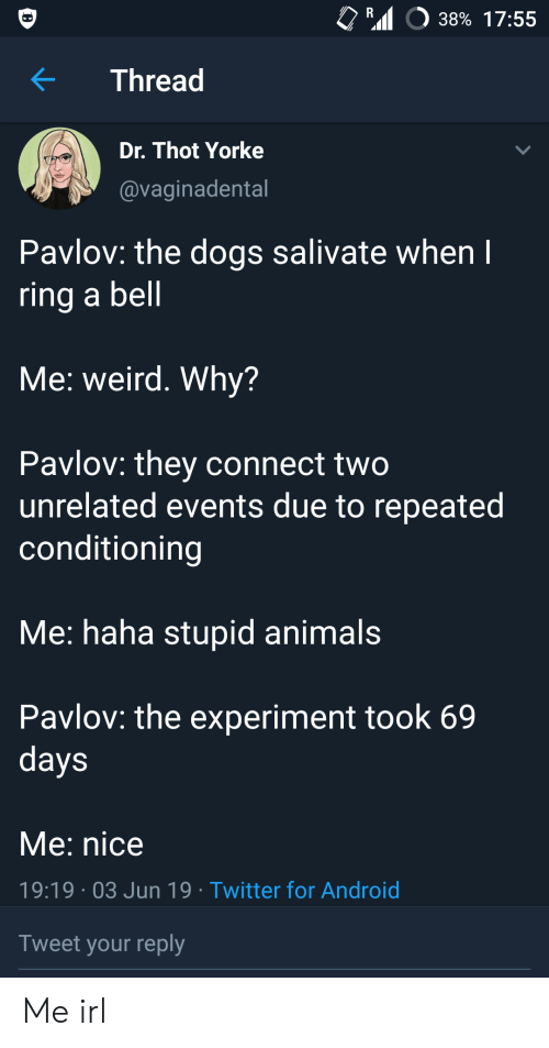Android, Animals, and Dogs: R  38% 17:55  Thread  Dr. Thot Yorke  @vaginadental  Pavlov: the dogs salivate when I  ring a bell  Me: weird. Why?  Pavlov: they connect two  unrelated events due to repeated  conditioning  Me: haha stupid animals  Pavlov: the experiment took 69  days  Me: nice  19:19 03 Jun 19 Twitter for Android  Tweet your reply Me irl