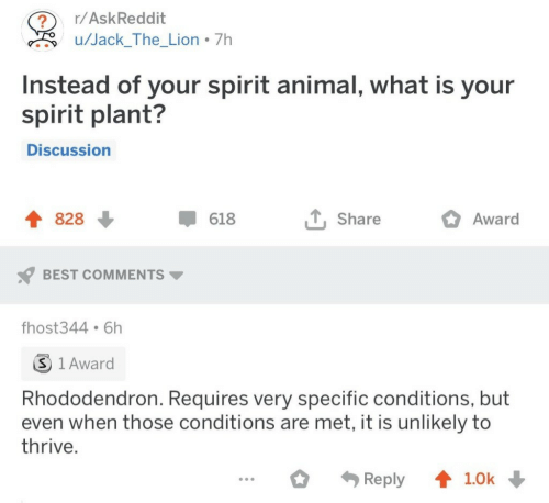 thrive: r/AskReddit  ?  u/Jack_The_Lion 7h  Instead of your spirit animal, what is your  spirit plant?  Discussion  828  618  Share  Award  BEST COMMENTS  fhost344 6h  S 1 Award  Rhododendron. Requires very specific conditions, but  even when those conditions are met, it is unlikely to  thrive.  Reply  1.0k