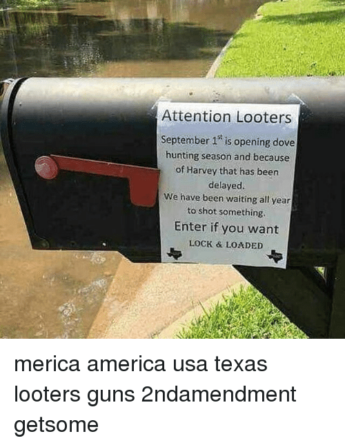 shotting: r:  Attention Looters  September 1 is opening dove  hunting season and because  of Harvey that has been  delayed.  We have been waiting all year  to shot something  Enter if you want  LOCK & LOADED merica america usa texas looters guns 2ndamendment getsome