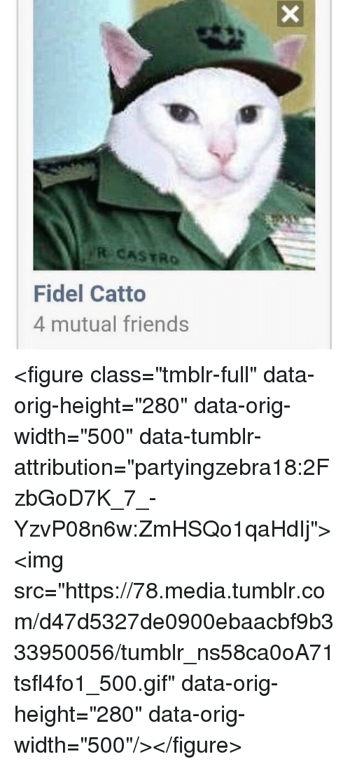 "Fidel: R CASTRO  Fidel Catto  4 mutual friends <figure class=""tmblr-full"" data-orig-height=""280"" data-orig-width=""500"" data-tumblr-attribution=""partyingzebra18:2FzbGoD7K_7_-YzvP08n6w:ZmHSQo1qaHdIj""><img src=""https://78.media.tumblr.com/d47d5327de0900ebaacbf9b333950056/tumblr_ns58ca0oA71tsfl4fo1_500.gif"" data-orig-height=""280"" data-orig-width=""500""/></figure>"