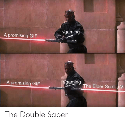 Gif, Gaming, and Elder Scrolls: r/gaming  A promising GIF  A promising GIF  r/gaming The Elder Scrolls V The Double Saber