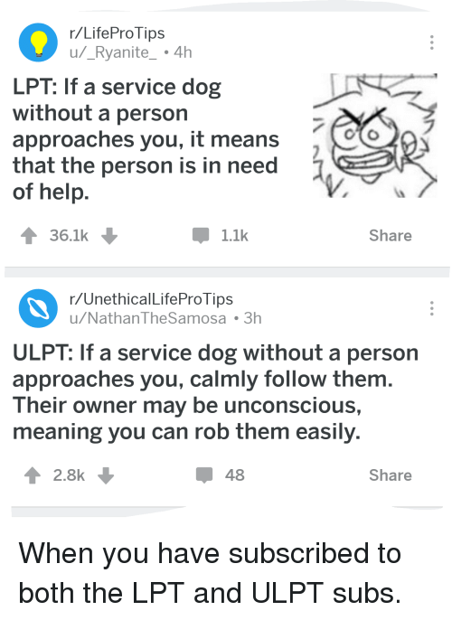 Funny, Lpt, and Help: r/LifeProTips  u/_Ryanite 4h  LPT: If a service dog  without a person  approaches you, it means  that the person is in need  of help  36.1k  1.1k  Share  r/UnethicalLifeProTips  u/NathanTheSamosa 3h  ULPT: If a service dog without a person  approaches you, calmly follow themm  Their owner may be unconscious,  meaning you can rob them easily  2.8k  48  Share When you have subscribed to both the LPT and ULPT subs.