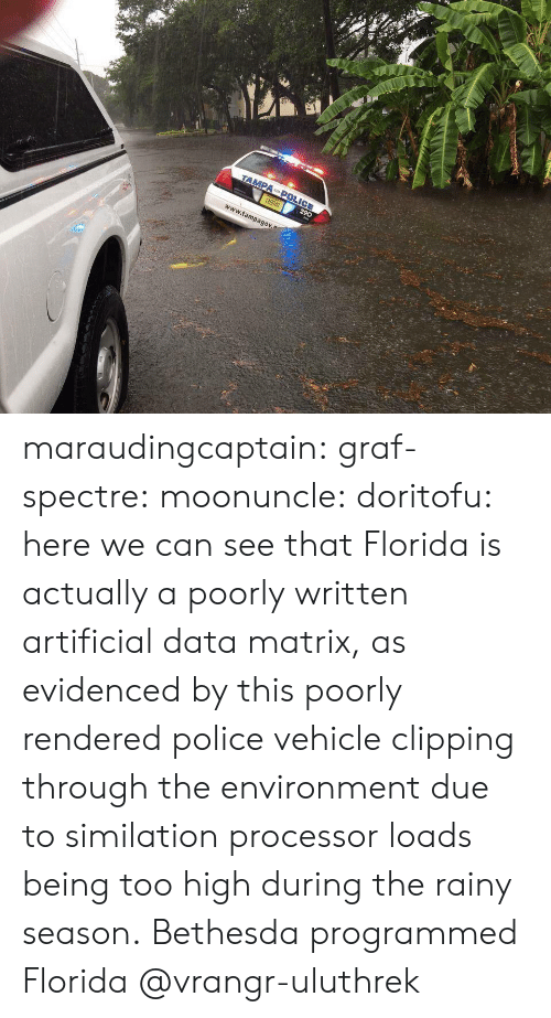 spectre: r1  www.tampagov maraudingcaptain:  graf-spectre:  moonuncle:  doritofu: here we can see that Florida is actually a poorly written artificial data matrix, as evidenced by this poorly rendered police vehicle clipping through the environment due to similation processor loads being too high during the rainy season. Bethesda programmed Florida     @vrangr-uluthrek