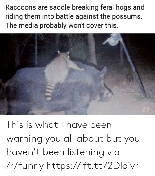 Funny, Been, and Haven: Raccoons are saddle breaking feral hogs and  riding them into battle against the possums.  The media probably won't cover this This is what I have been warning you all about but you haven't been listening via /r/funny https://ift.tt/2DIoivr