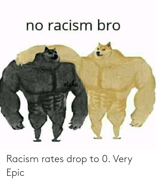 Racism: Racism rates drop to 0. Very Epic