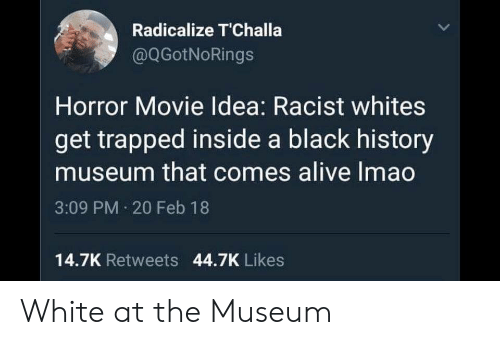 Alive, Black, and History: Radicalize T'Challa  @QGotNoRings  Horror Movie Idea: Racist whites  get trapped inside a black history  museum that comes alive Imao  3:09 PM 20 Feb 18  14.7K Retweets 44.7K Likes White at the Museum