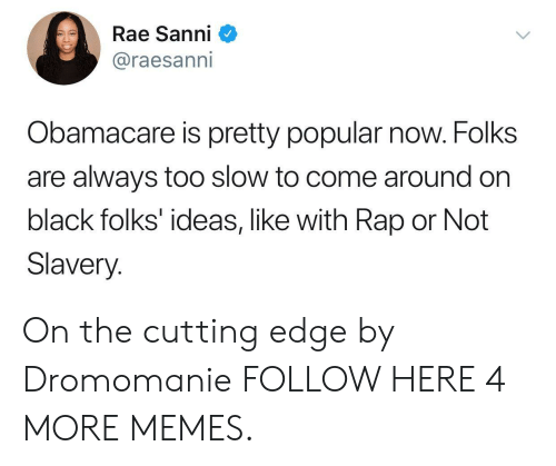 Orli: Rae Sanni  @raesanni  Obamacare is pretty popular now. Folks  are always too slow to come around on  black folks' ideas, like with Rap or Not  Slavery. On the cutting edge by Dromomanie FOLLOW HERE 4 MORE MEMES.