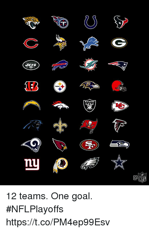 Memes, Goal, and Raiders: RAIDERS 12 teams. One goal. #NFLPlayoffs https://t.co/PM4ep99Esv