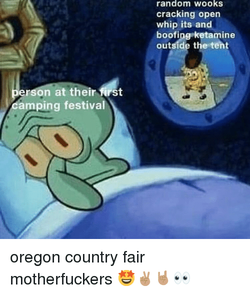 Reddit, Whip, and Oregon: random wooks  cracking open  whip its and  boofing ketamine  outside the tent  erson at their first  camping festival