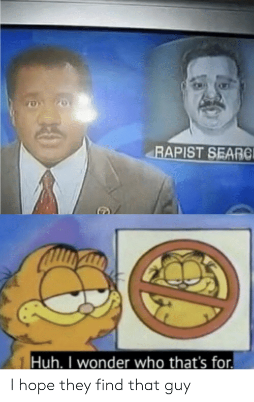 that guy: RAPIST SEARC  Huh. I wonder who that's for I hope they find that guy