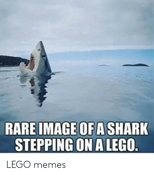 Lego, Memes, and Shark: RARE IMAGE OF A SHARK  STEPPING ON A LEGO. LEGO memes