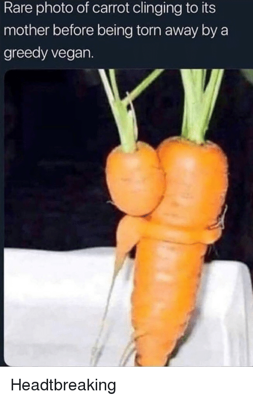 Vegan, Mother, and Torn: Rare photo of carrot clinging to its  mother before being torn away by a  greedy vegan. Headtbreaking