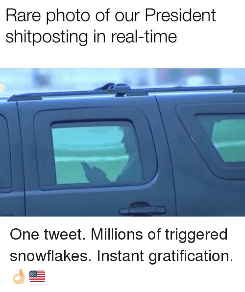 Memes, Time, and Gratification: Rare photo of our President  shitposting in real-time One tweet. Millions of triggered snowflakes. Instant gratification. 👌🏼🇺🇸