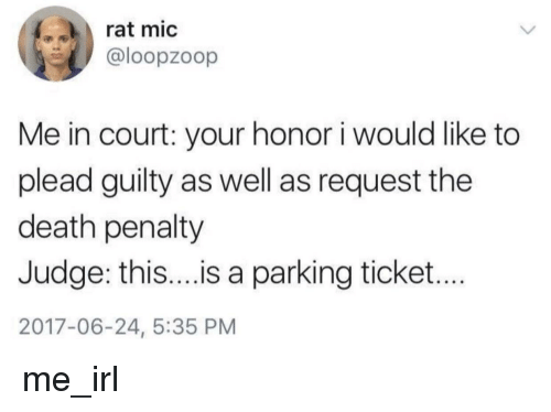 Death, Irl, and Me IRL: rat mic  @loopzoop  Me in court: your honor i would like to  plead guilty as well as request the  death penalty  Judge: thi...is a parking ticket...  2017-06-24, 5:35 PM me_irl
