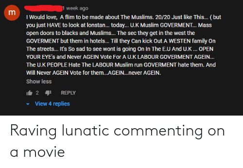 raving: Raving lunatic commenting on a movie