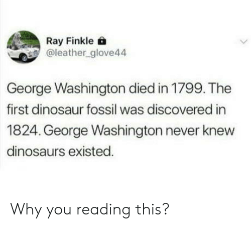 Dinosaur, Dinosaurs, and Fossil: Ray Finkle 6  @leather_glove44  George Washington died in 1799. The  first dinosaur fossil was discovered in  1824. George Washington never knew  dinosaurs existed. Why you reading this?