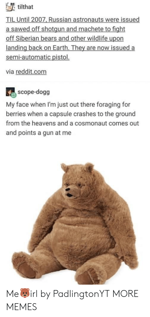 to-the-ground: RE  tilthat  TIL Until 2007, Russian astronauts were issued  a sawed off shotgun and machete to fight  off Siberian bears and other wildlife upon  landing back on Earth. They are now issued a  semi-automatic pistol.  via reddit.com  scope-dogg  My face when I'm just out there foraging for  berries when a capsule crashes to the ground  from the heavens and a cosmonaut comes out  and points a gun at me Me🐻irl by PadlingtonYT MORE MEMES