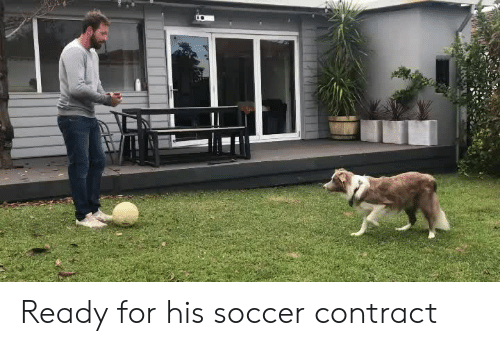 Soccer, For, and  Ready: Ready for his soccer contract