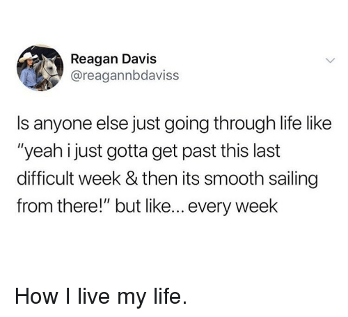 "Life, Memes, and Smooth: Reagan Davis  @reagannbdaviss  Is anyone else just going through life like  ""yeah i just gotta get past this last  difficult week & then its smooth sailing  from there!"" but like... every week How I live my life."