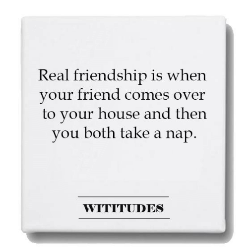 Dank, House, and Friendship: Real friendship is when  your friend comes over  to your house and then  you both take a nap  WITITUDES