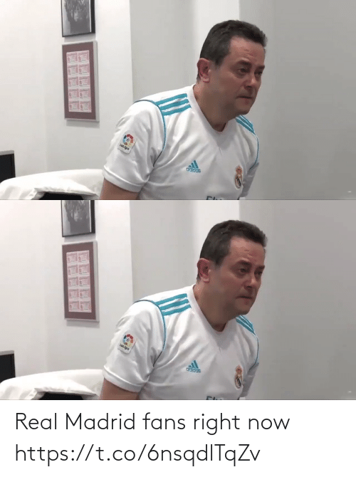 fans: Real Madrid fans right now  https://t.co/6nsqdlTqZv