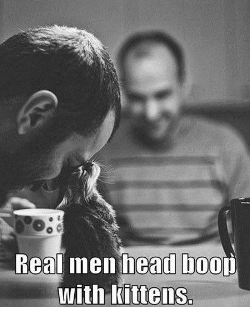 Boo, Head, and Memes: Real men head boo  with kittens.