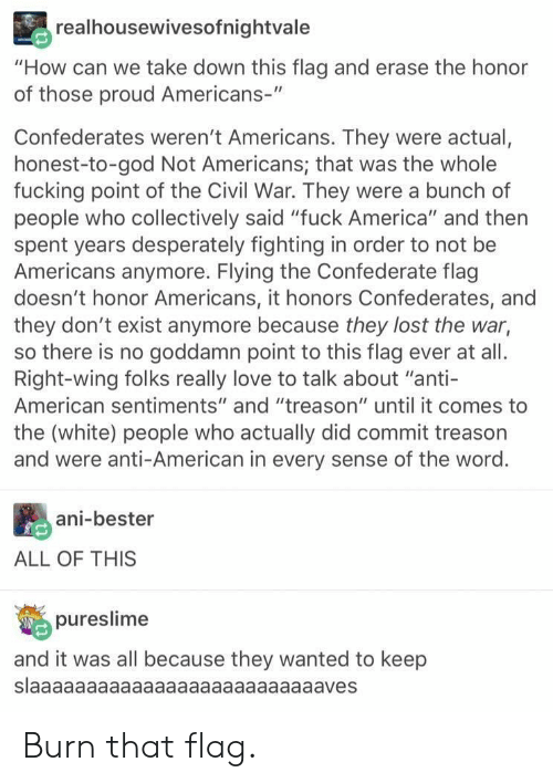 "America, Confederate Flag, and Fucking: realhousewivesofnightvale  ""How can we take down this flag and erase the honor  of those proud Americans-""  Confederates weren't Americans. They were actual,  honest-to-god Not Americans; that was the whole  fucking point of the Civil War. They were a bunch of  people who collectively said ""fuck America"" and then  spent years desperately fighting in order to not be  Americans anymore. Flying the Confederate flag  doesn't honor Americans, it honors Confederates, and  they don't exist anymore because they lost the war,  so there is no goddamn point to this flag ever at all.  Right-wing folks really love to talk about ""anti-  American sentiments"" and ""treason"" until it comes to  the (white) people who actually did commit treason  and were anti-American in every sense of the word.  ani-bester  ALL OF THIS  pureslime  and it was all because they wanted to keep  slaaaaaaaaaaaaaaaaaaaaaaaaaaves Burn that flag."