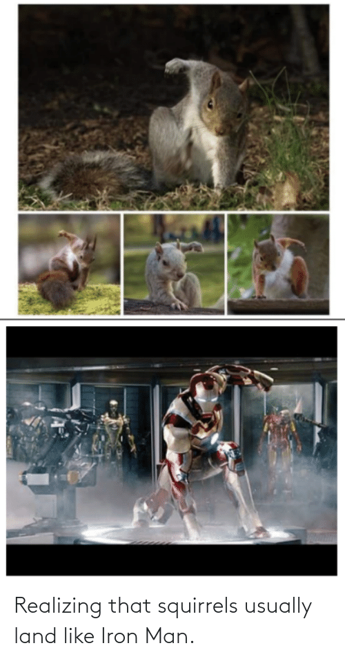 squirrels: Realizing that squirrels usually land like Iron Man.