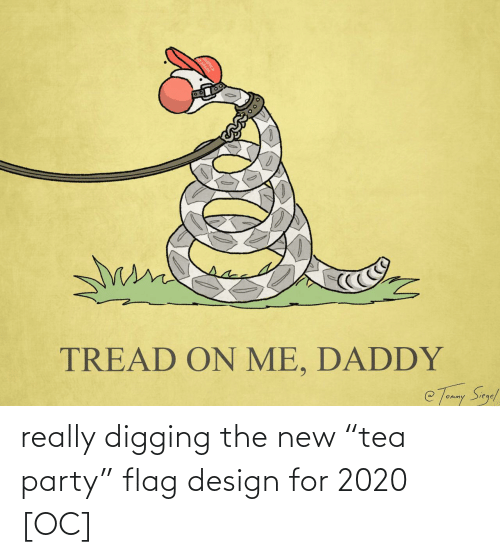 "Party: really digging the new ""tea party"" flag design for 2020 [OC]"