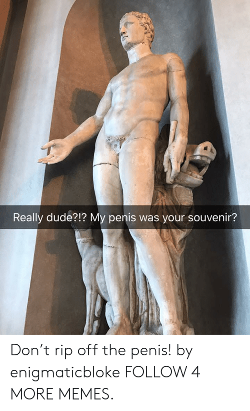 Dank, Dude, and Memes: Really dude?!? My penis was your souvenir? Don't rip off the penis! by enigmaticbloke FOLLOW 4 MORE MEMES.