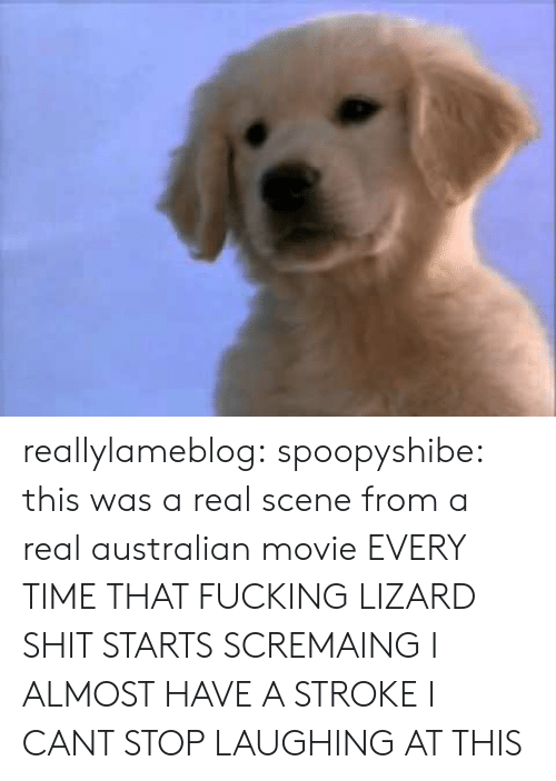 Fucking, Shit, and Tumblr: reallylameblog:  spoopyshibe:  this was a real scene from a real australian movie  EVERY TIME THAT FUCKING LIZARD SHIT STARTS SCREMAING I ALMOST HAVE A STROKE I CANT STOP LAUGHING AT THIS